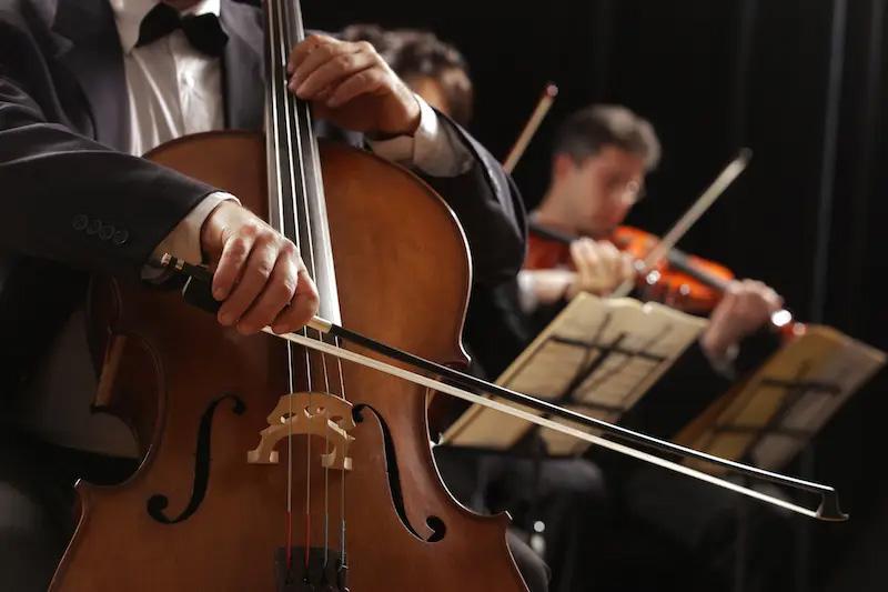 camerata-strings